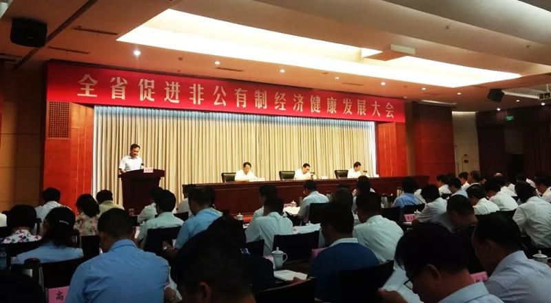 河南省促进非公有制经济健康发展大会召开 河南江河纸业再获殊荣