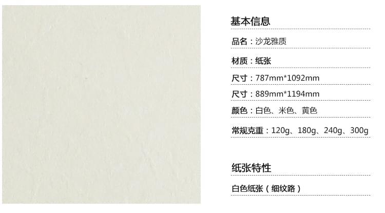 沙龙雅质纹路纸