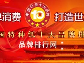 """荣耀揭晓""""2018年度中国特种纸十大品牌总评榜"""""""